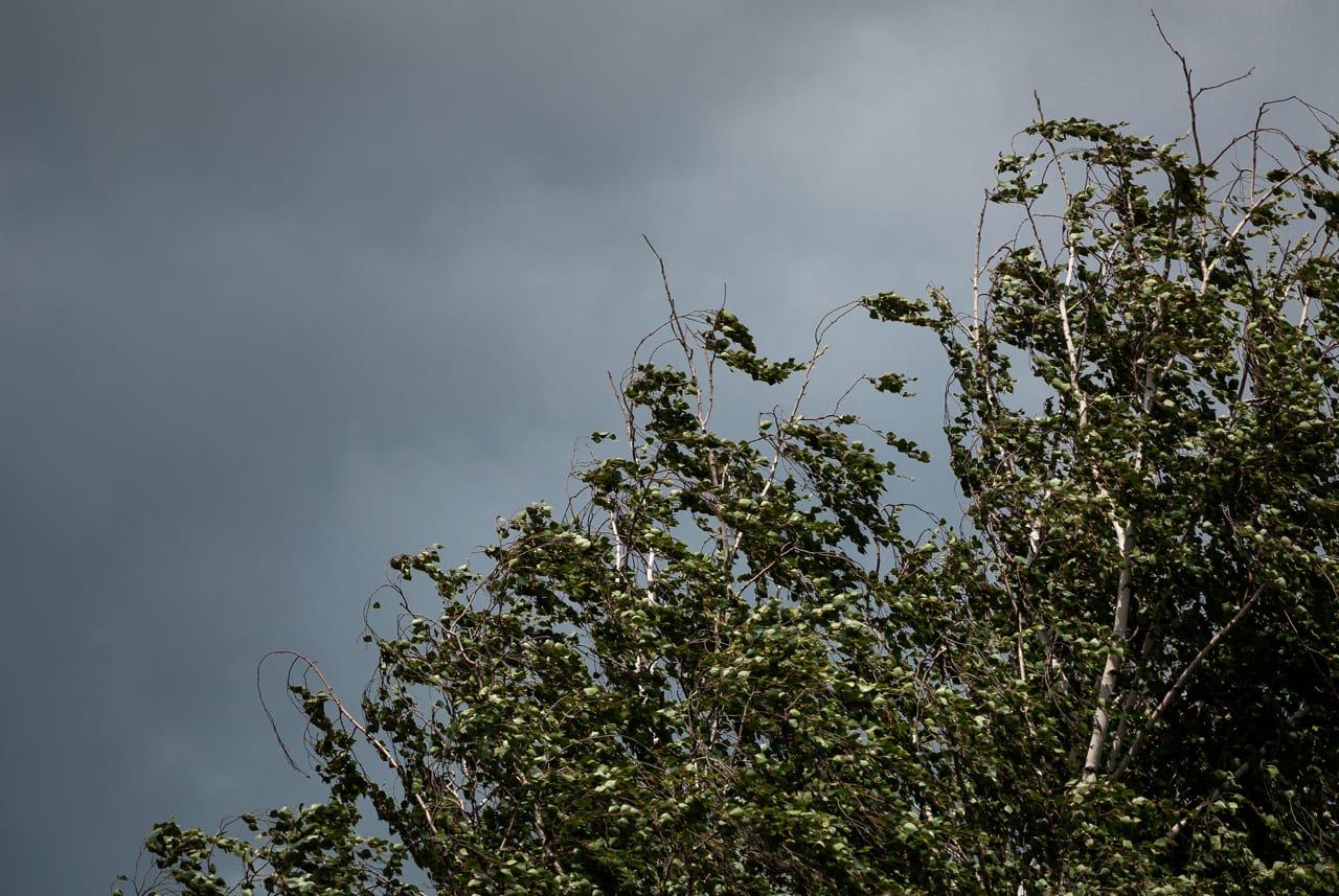 «Сложная» погода с аномалиями: чего ждать тулякам