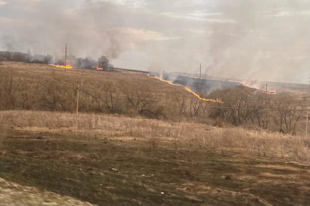 В Тульской области продолжаются случаи возгорания сухой травы