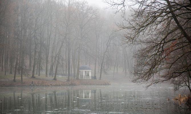 27 января в Туле дождь и гололедица