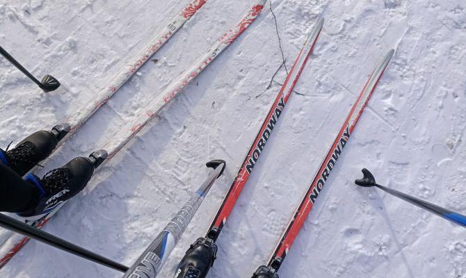 Из-за лыжных соревнований на Косой Горе ограничат остановку транспорта