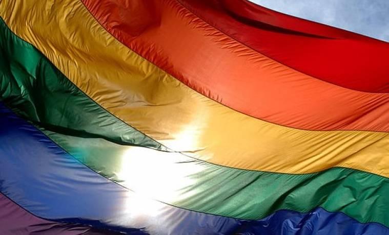 Организаторы гей-парада в Туле подали в суд