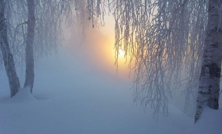 Что творится с погодой в Туле и когда будет тепло