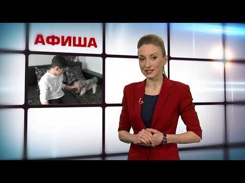 """Афиша: узнаем, кто выступит на """"Дикой Мяте"""", что в Тулу везут из Сибири"""